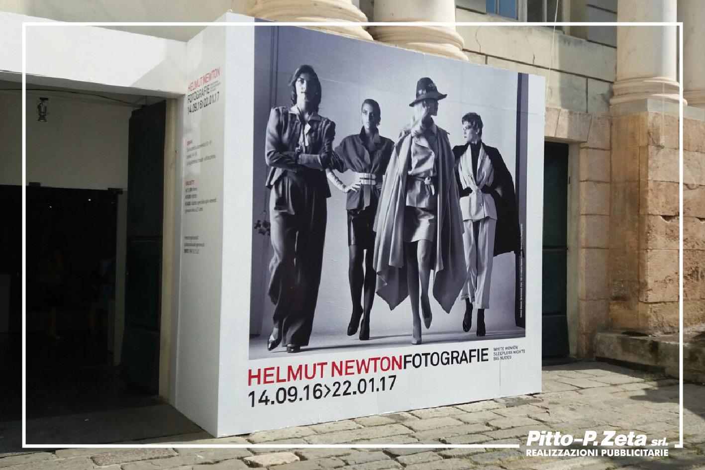Newton-portale-Ducale
